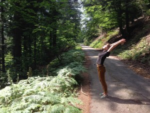 black forest yoga
